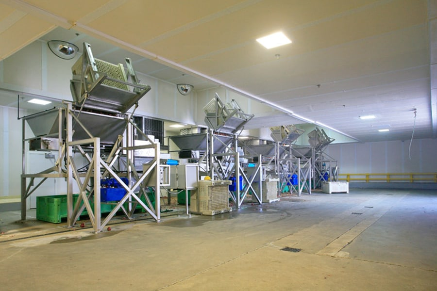 Produce Processing Plant